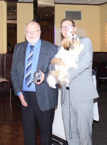 Sachi tsin Fatinat al Sjark Weihnachtsaustelung CAC Grasberg 13 dec 2014 best pup of show BIS 1 richter herr Holter Hofman