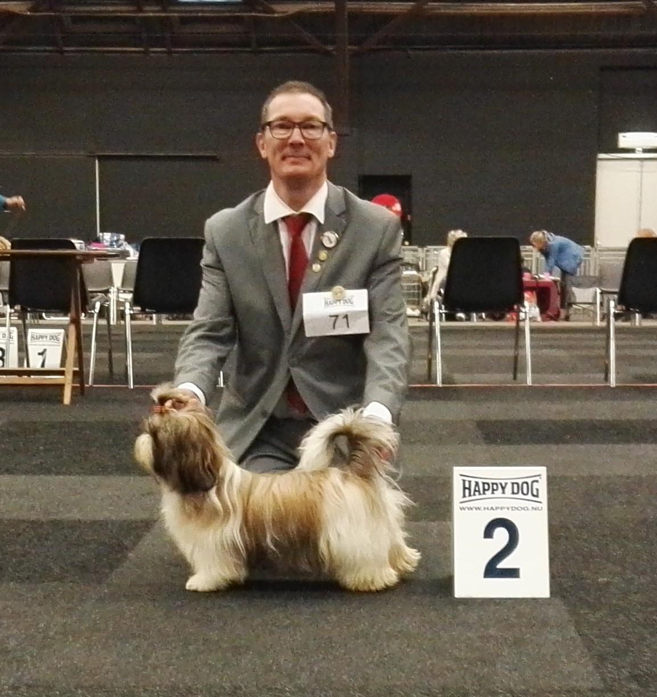 Internationale Dogshow te Zwolle 01-10-2016 Love of Sanmarlo Kaja Karisma 2 plaats Keurmeester: Regina Trom-Pruyn (NL)