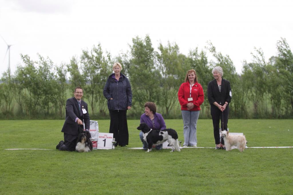 Beste senior handler 2013 bij Show Dog center